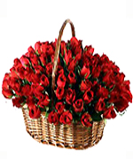 Valentine Gifts to Chennai with 100 Red Roses Handle Basket