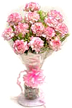 Send Carnations bouquet to Chennai.