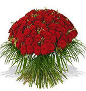 50 Red Rose Flowers Bouquet For Chennai Delivery