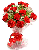 Red carnation flowers to Chennai