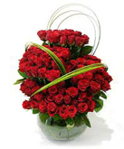 Send valentine gifts with 75 red rose in pot to chennai delivery