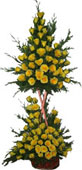 4ft Two step 100 Roses Flowers Arrangement to Chennai delivery