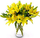 Lilies in a Vase on Fathers Day