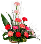Thank you with 12 Carnation Basket to Chennai Delivery