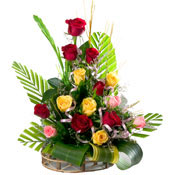 Congratulations with 15 Mixed Roses Basket to Chennai Delivery
