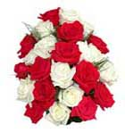 18 Red and White Rose Flowers Bouquet to Chennai Delivery
