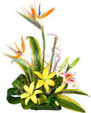 Lily and BOP Flower Basket to Chennai Delivery