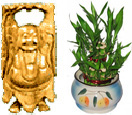 Diwali Gifts with Buddha with Lucky Bamboo to Chennai Delivery