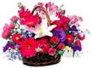 Thank you with Mixed Flower Basket to Chennai Delivery