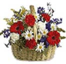 Mixed Congratulations Flower Basket to Chennai Delivery