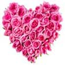 Pink Roses in Heart Shaped for Chennai delivery