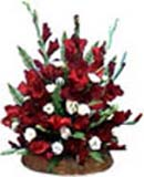 Wedding Gifts with Gladiolus Arrangement to Chennai Delivery