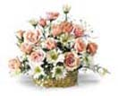Pink Rose white Daisies Basket for Condolence to Chennai Delivery