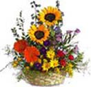 Mixed Bright Flowers Basket to Chennai Delivery
