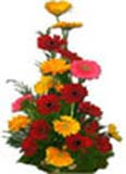 Get well Soon with 24 Red Yellow Gerbera Basket to Chennai Delivery