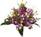 Orchids & Roses Flowers Basket to Chennai Delivery