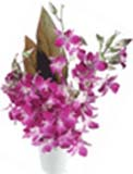 Diwali Gifts with 10 Stem Fresh Orchids in Vase to Chennai Delivery