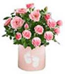 24 Pink Roses Flowers in a Ceramic Pot House Warming Gift to Chennai Delivery