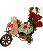 Valentines Day Gift with Teddy On Cycle with Ferrero and Flowers to Chennai Delivery