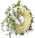 send Big Wreath with White Roses and daises for Condolence to Chennai Delivery