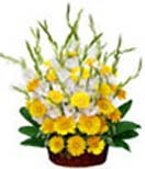 Pongal Gift with Yellow Gerbera & Glads Basket to Chennai Delivery