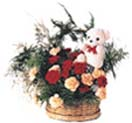 12 Carnations and Teddy Flowers Basket to Chennai Delivery