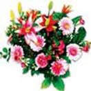 New born Gifts with Sweet Sentiments Bouquet to Chennai Delivery