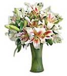 Lilies in a Vase for Condolence to Chennai Delivery