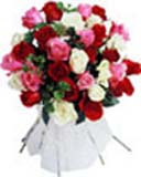 Love Bouquet Flowrs 36 Mixed Roses to Chennai Delivery