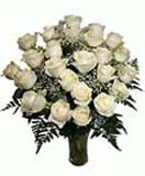 24 White Roses in Vase for Condolence to Chennai Delivery